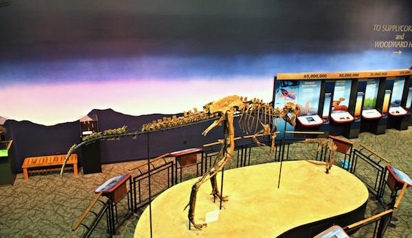 Jane the Dinosaur