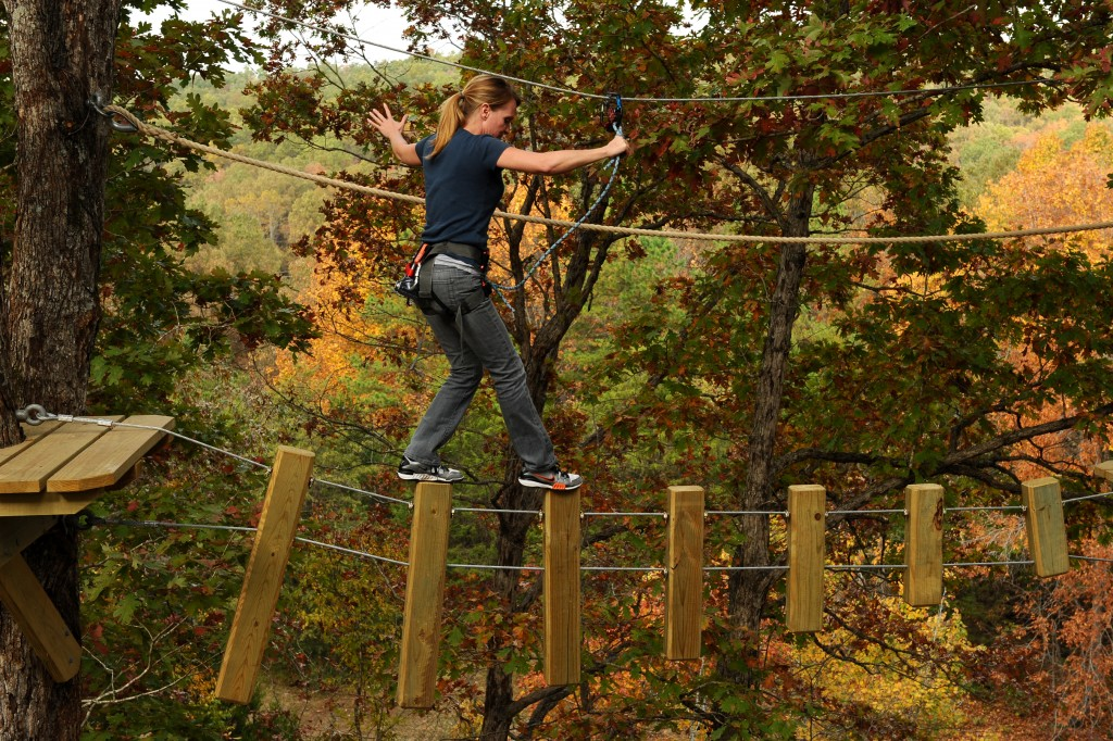 Loco Ropes Ozark Folk Center Mountain View