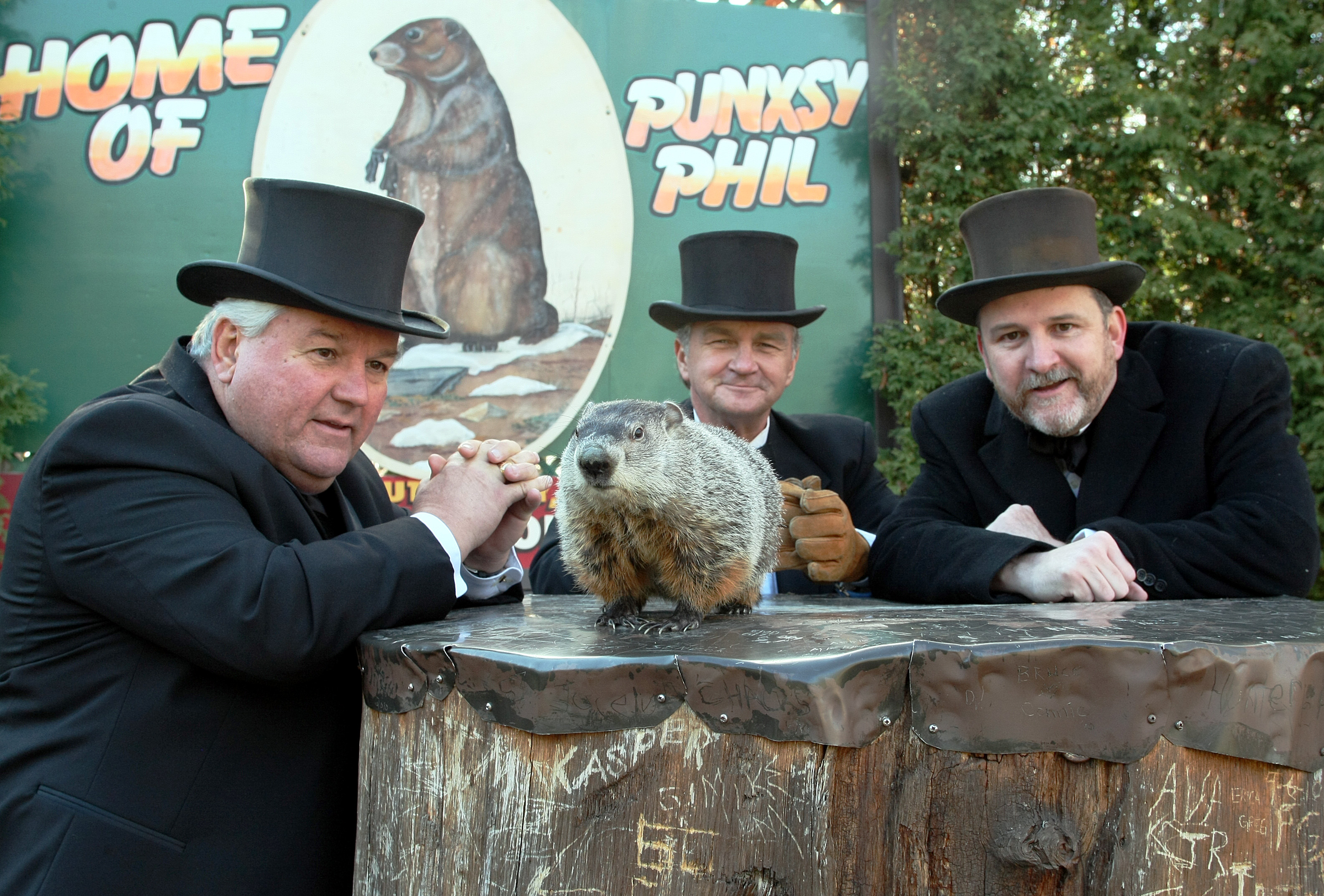 Groundhog Day Movie Quotes Three Rodents Prognosticate On Groundhog Day
