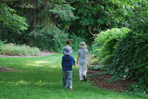 DSC_0434 Garden path w