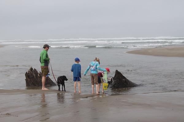 Oregon Coast Neskowin Beach Ghost Forest