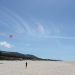 Kites on Beach