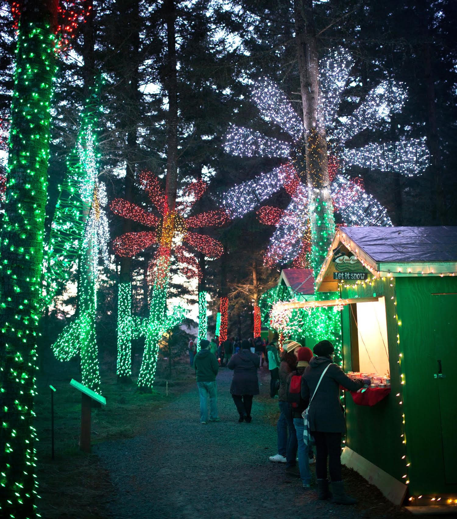 oregon magic and tradition mix at christmas in the garden event