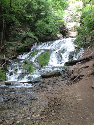 Dunning Springs Falls