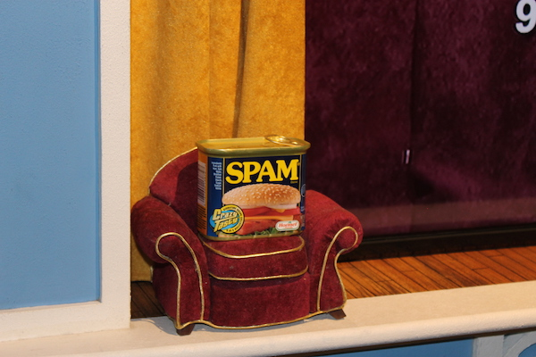spam on couch