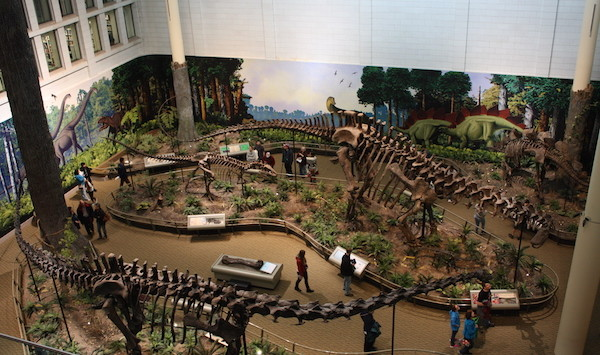 carnegiedinsosaurs