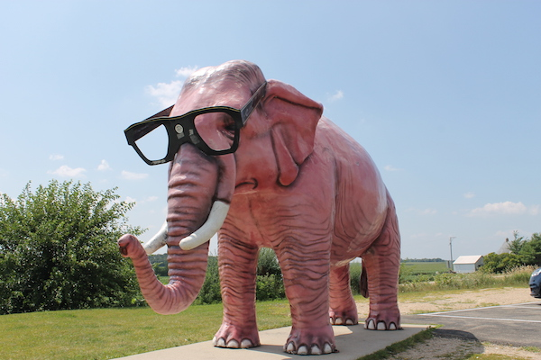 Elephant in Wisconsin