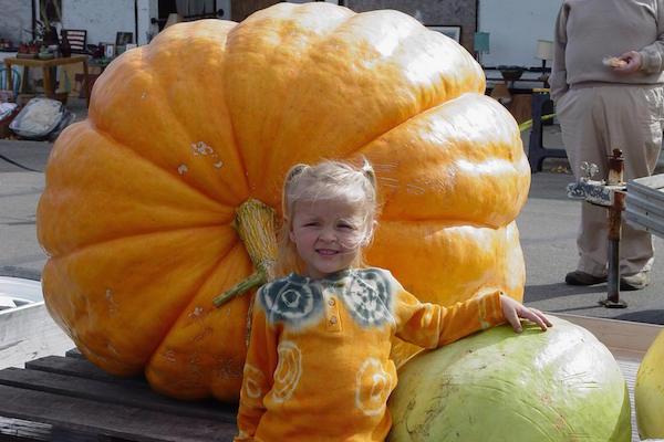Giant Pumpkin Festival Walhalla