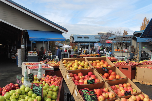 10 Activities for Families in Olympia, Washington Olympia Farmers Market