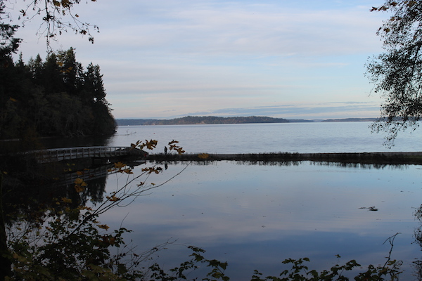 10 Activities for Families in Olympia, Washington Tolmie State Park