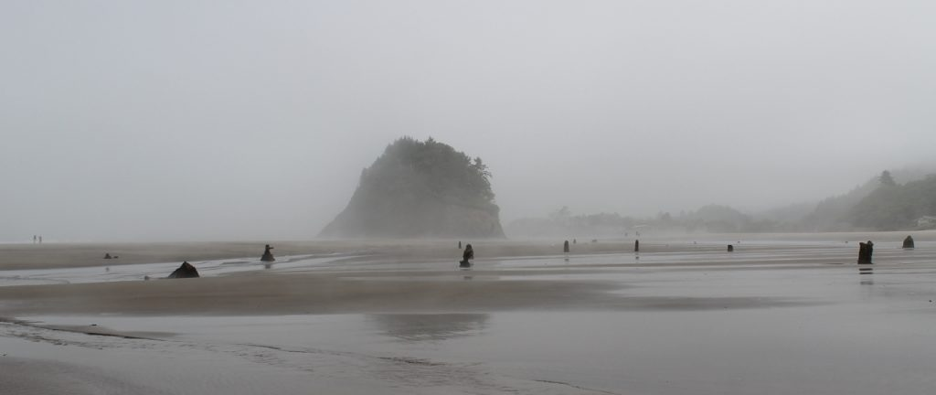 The Northern Oregon Coast In 38 Miles Road Trips For
